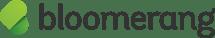 Bloomerang Logos_Bloomerang-Logo-Hor-RGB